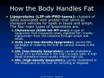 how the body handles fat35