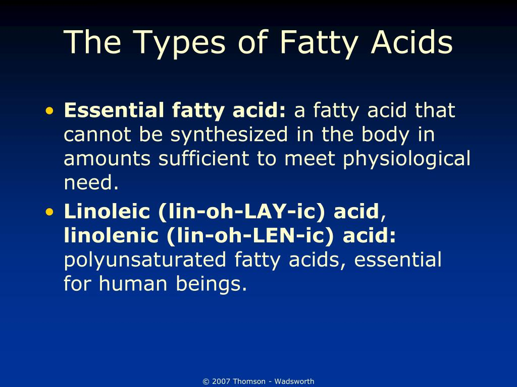 The Types of Fatty Acids