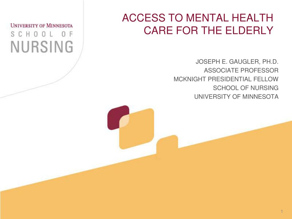access to mental health care for the elderly l.