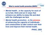 what is mental health promotion mhp