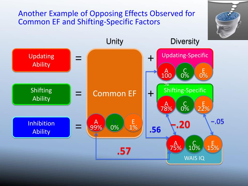 Another Example of Opposing Effects Observed for Common EF and Shifting-Specific Factors