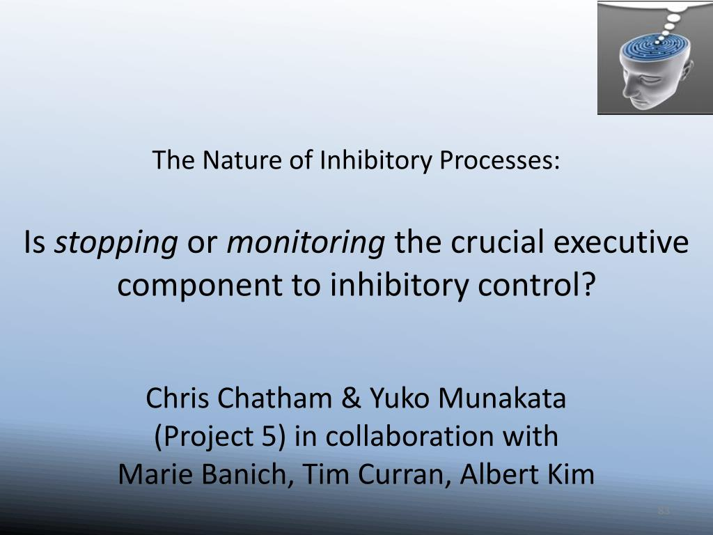 The Nature of Inhibitory Processes: