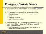 emergency custody orders14