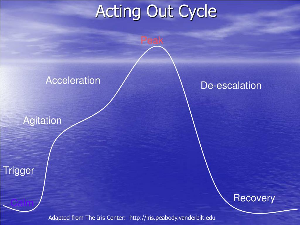 Acting Out Cycle