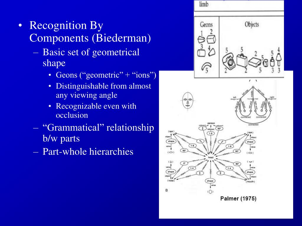 Recognition By Components (Biederman)