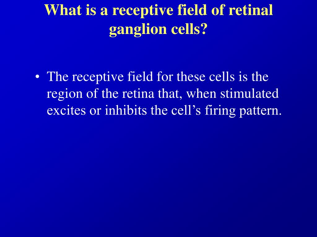 What is a receptive field of retinal ganglion cells?