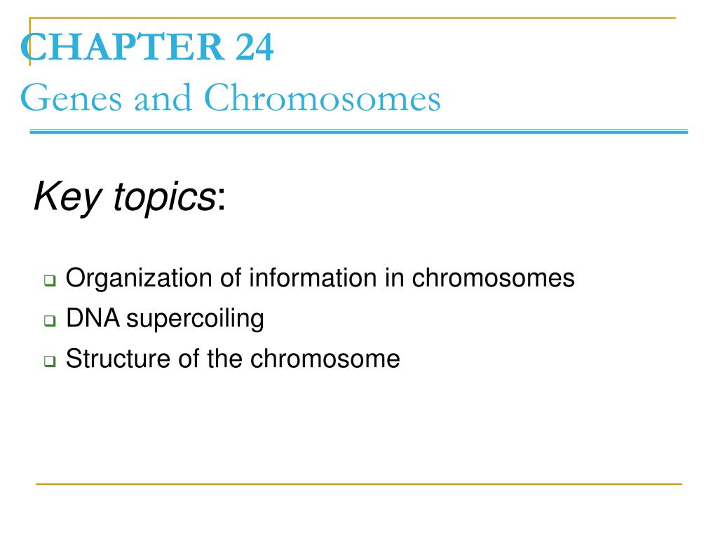 chapter 24 genes and chromosomes l.
