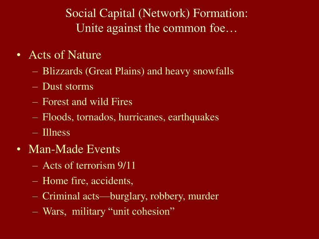 Social Capital (Network) Formation: