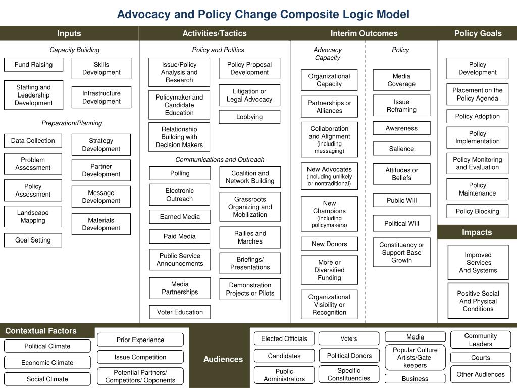 Advocacy and Policy Change Composite Logic Model