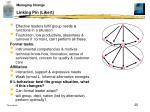 linking pin likert