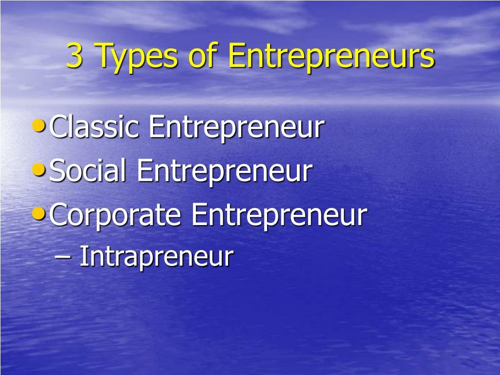 3 Types of Entrepreneurs