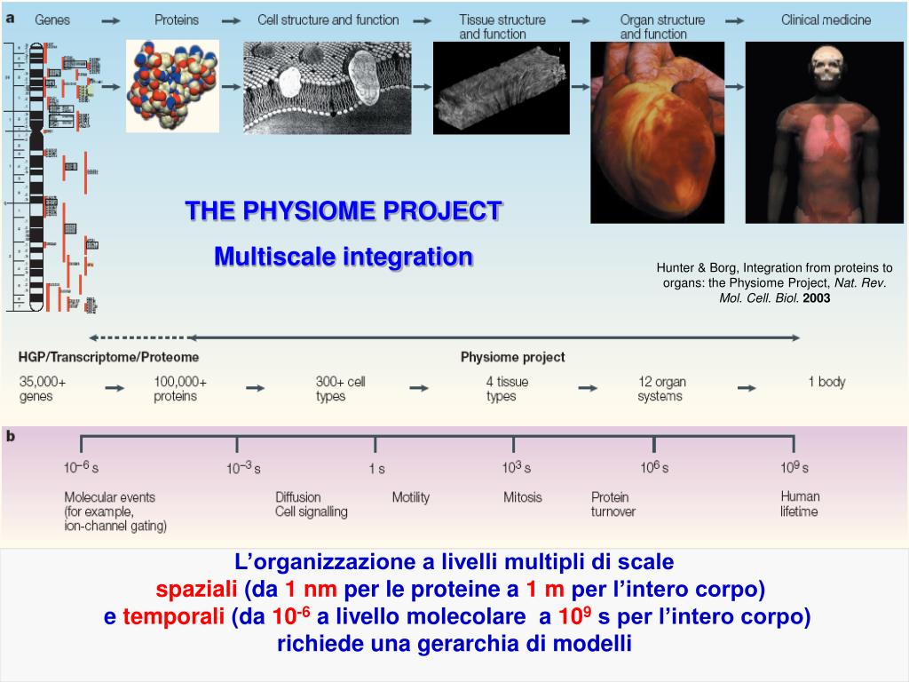 THE PHYSIOME PROJECT