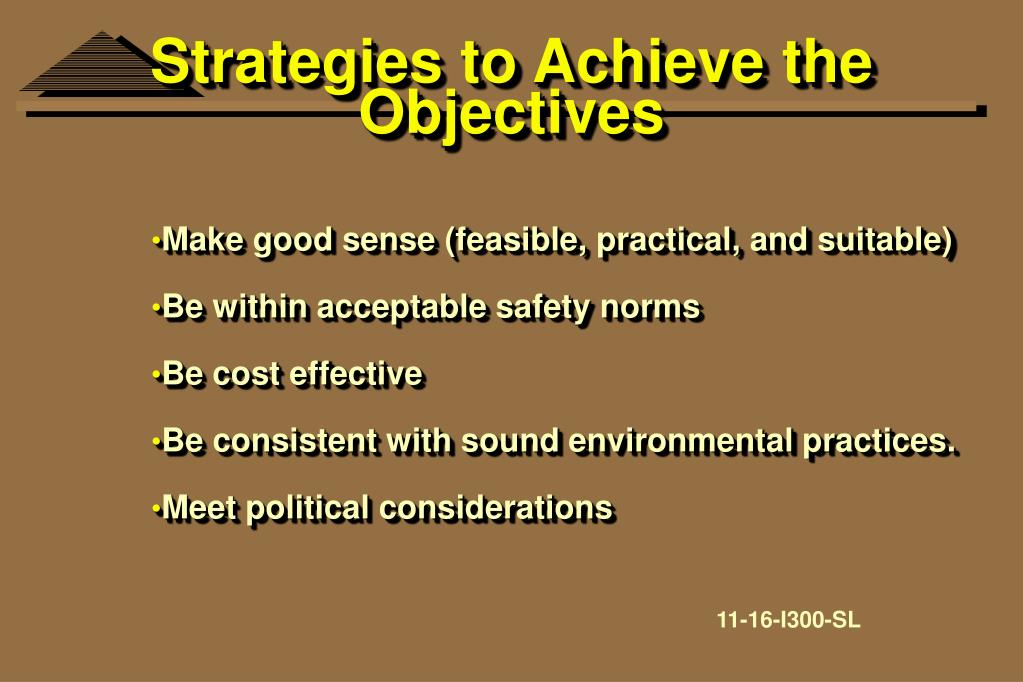 Strategies to Achieve the Objectives