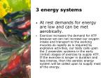 3 energy systems9