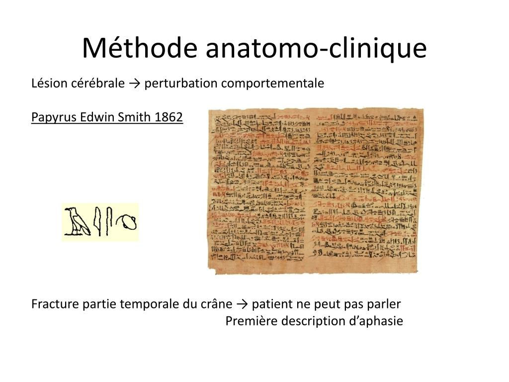 Méthode anatomo-clinique