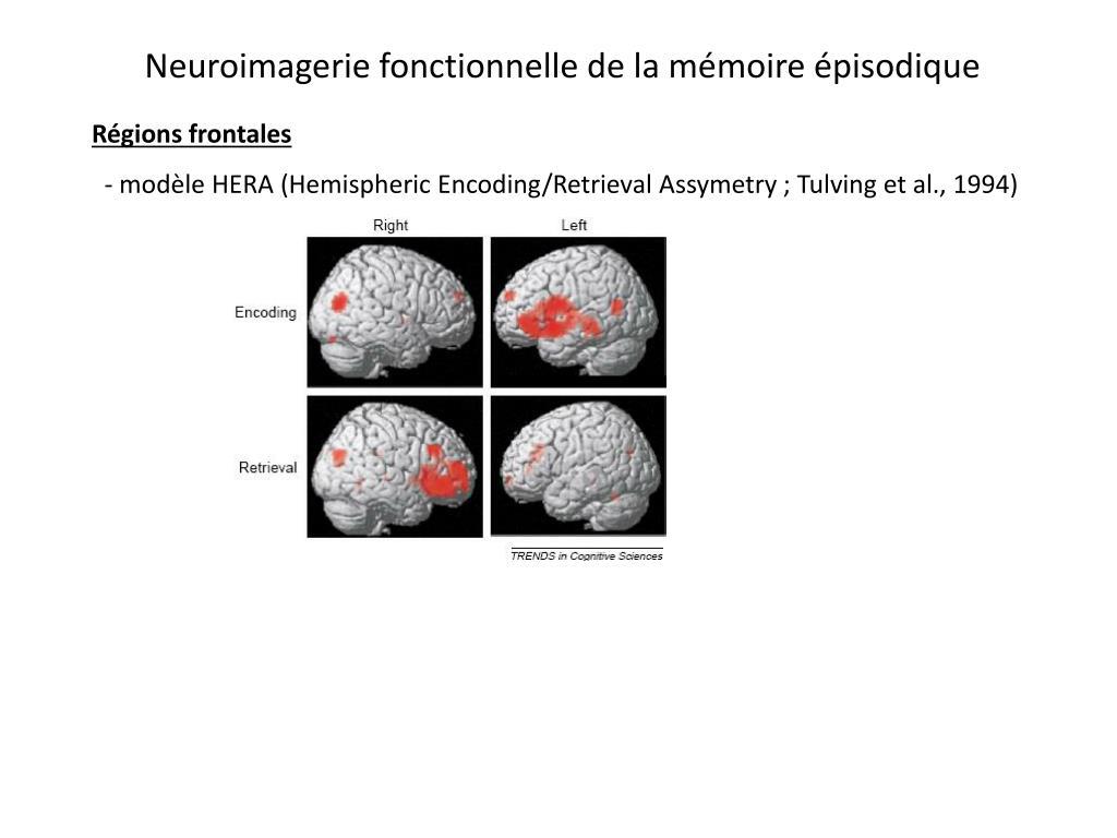 Neuroimagerie fonctionnelle de la mémoire épisodique