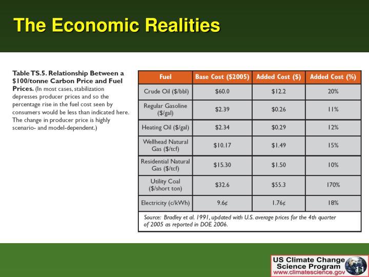 The Economic Realities