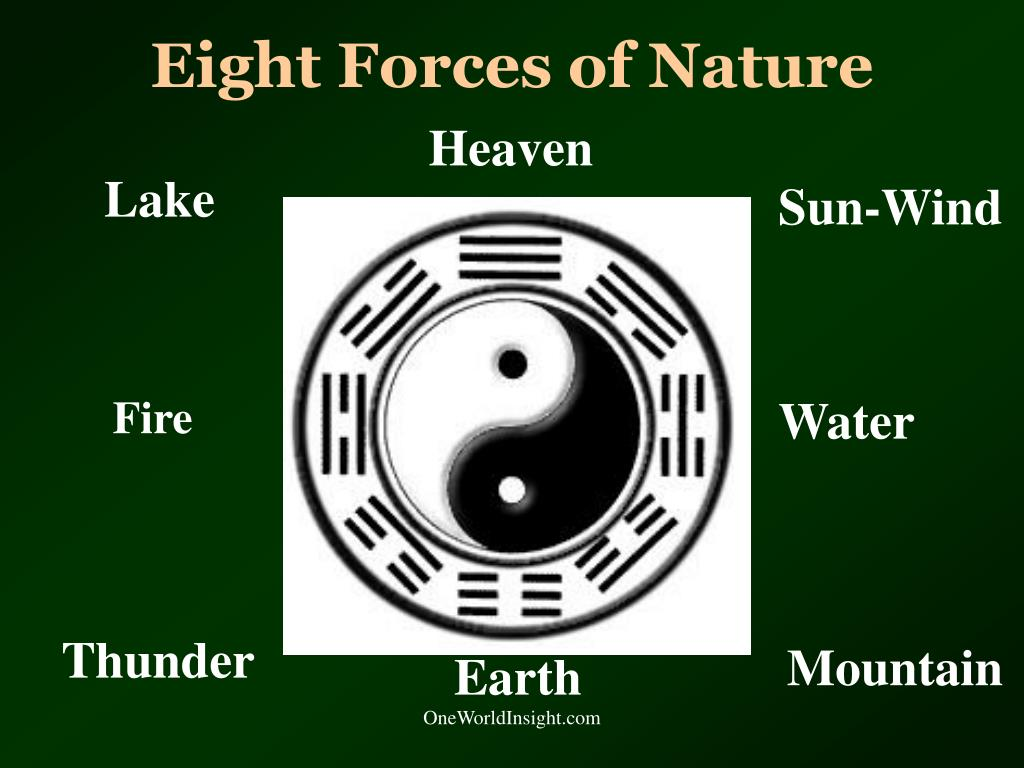 Eight Forces of Nature
