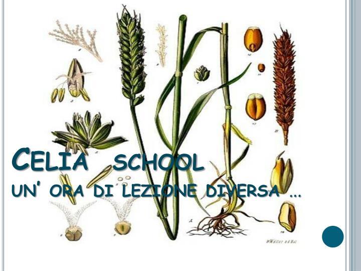 Celia school un ora di lezione diversa
