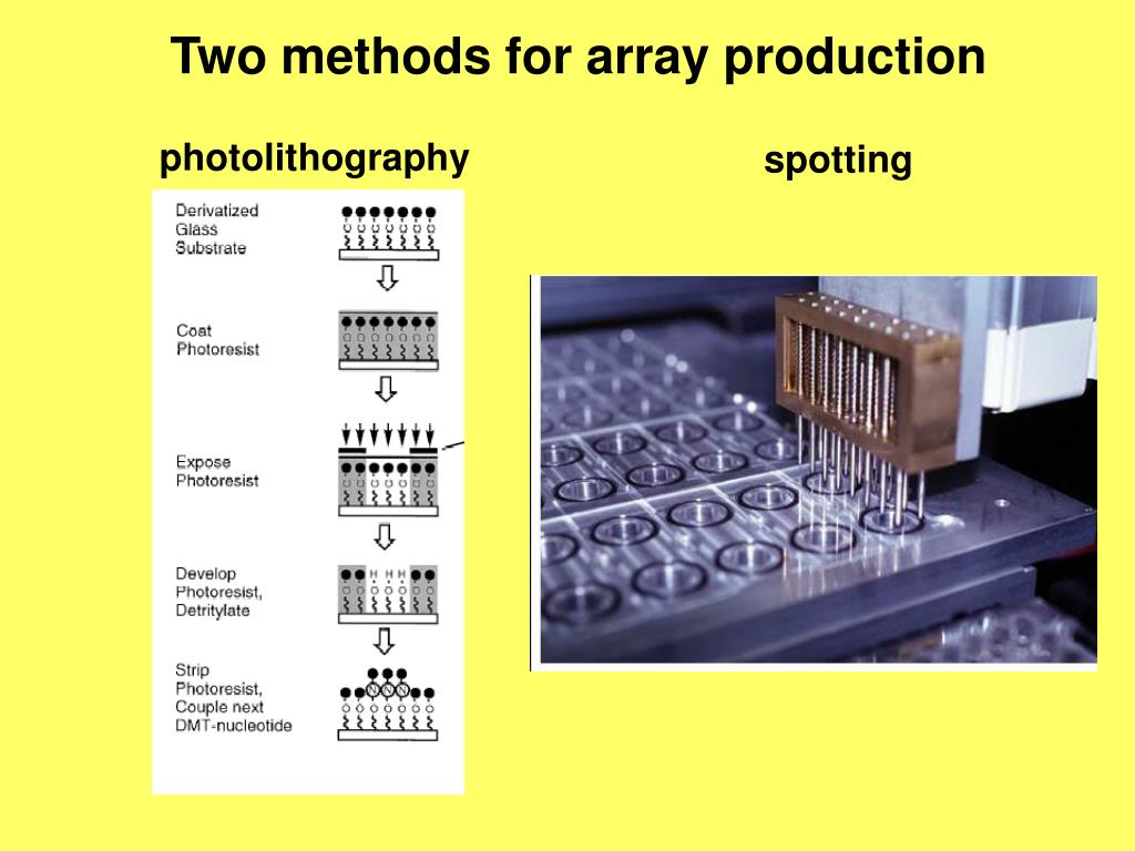 Two methods for array production