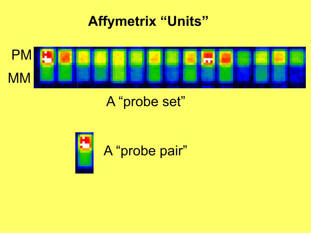 """Affymetrix """"Units"""""""