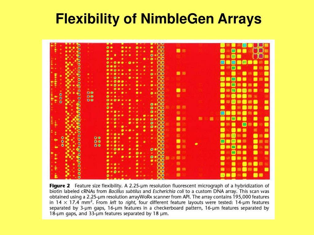 Flexibility of NimbleGen Arrays