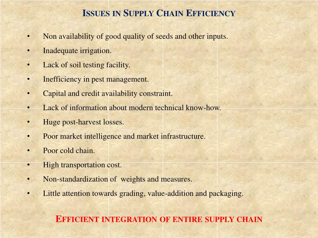 Issues in Supply Chain Efficiency