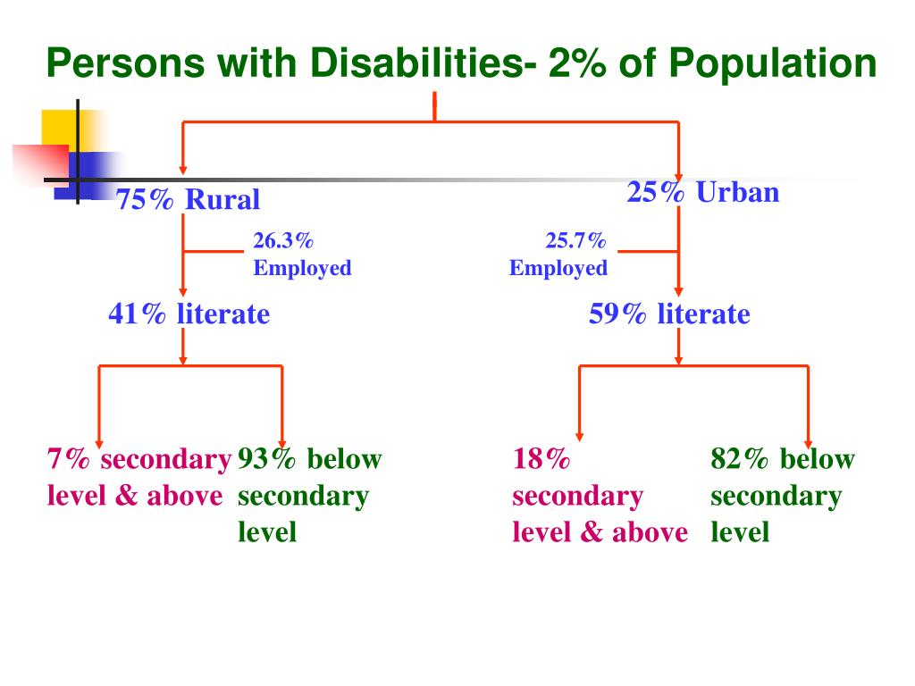 Persons with Disabilities- 2% of Population