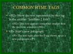 common html tags8