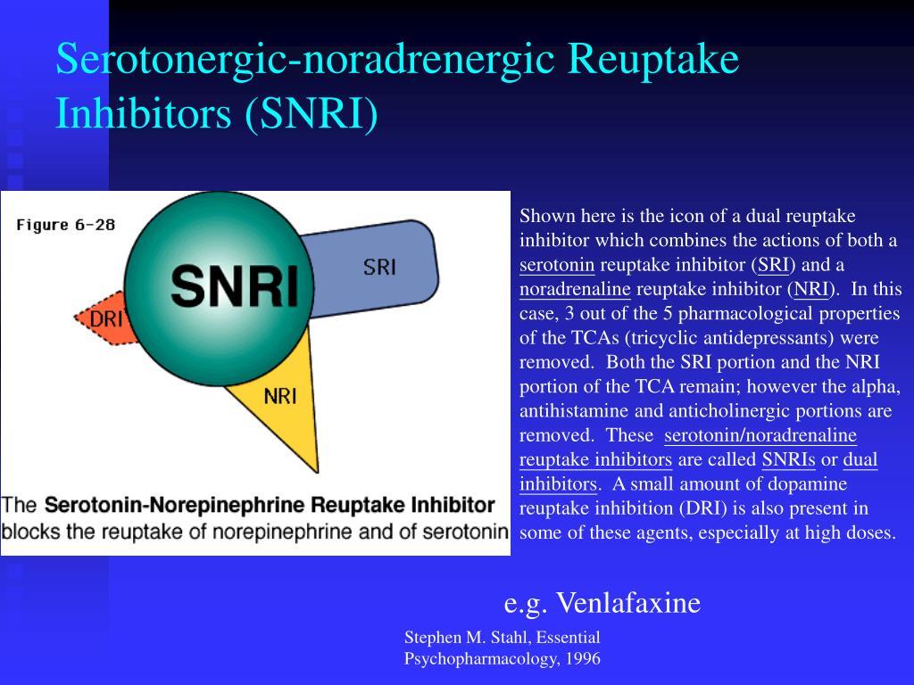 Serotonergic-noradrenergic Reuptake Inhibitors (SNRI)