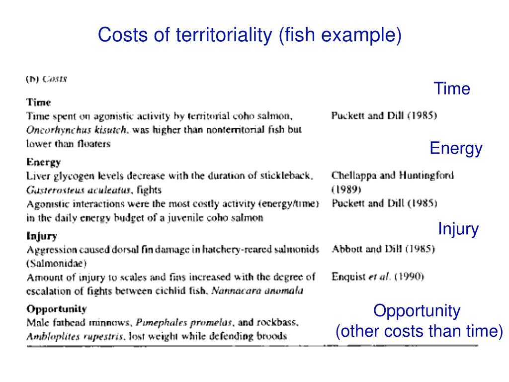Costs of territoriality (fish example)