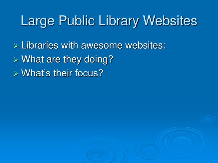 Large public library websites