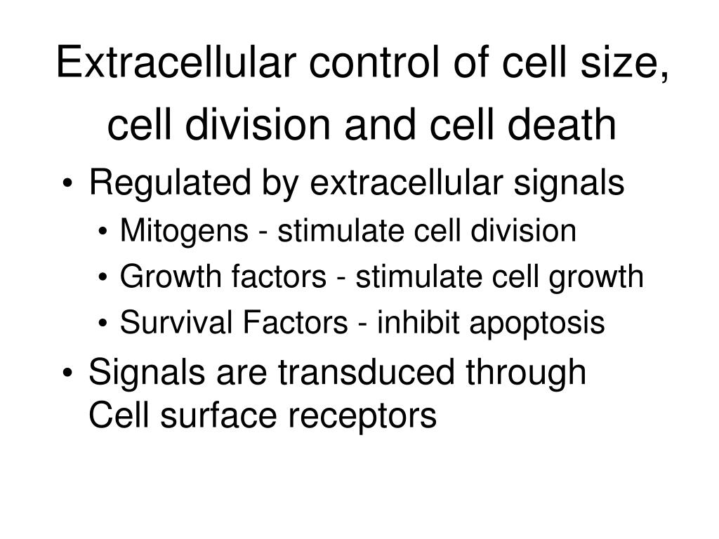 Extracellular control of cell size, cell division and cell death