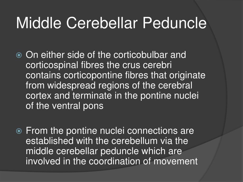 Middle Cerebellar Peduncle