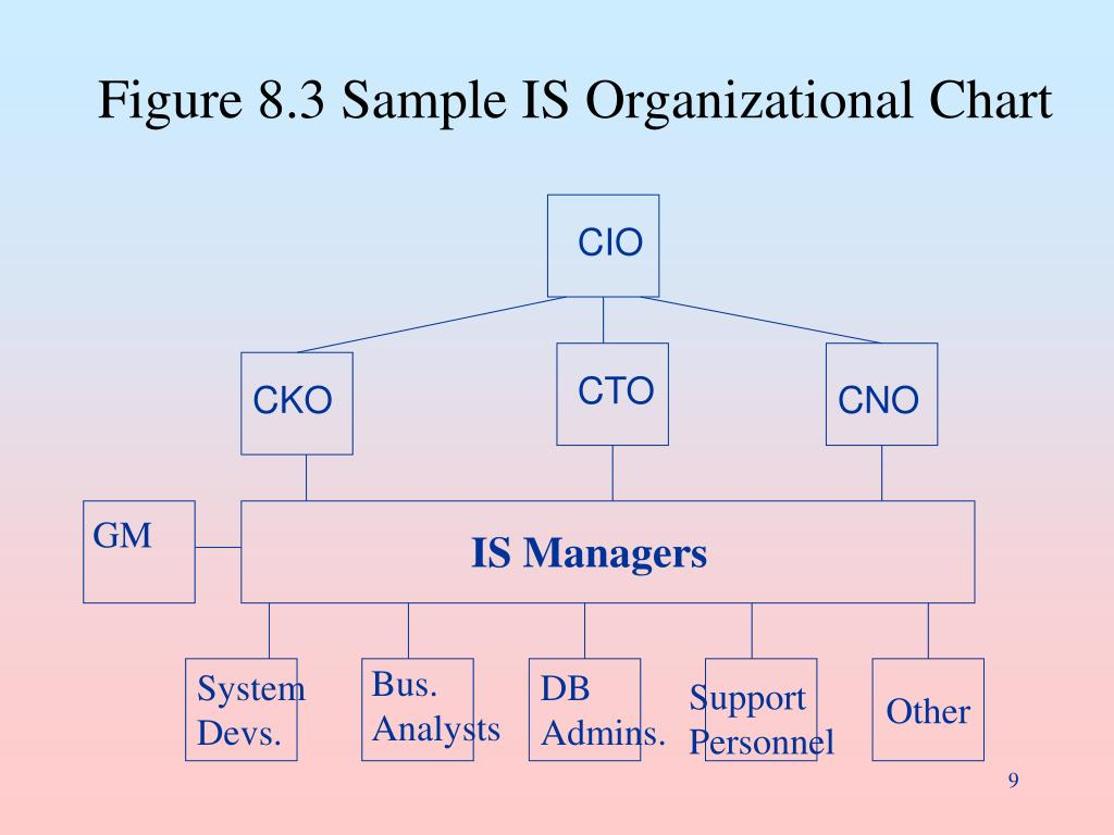 Figure 8.3 Sample IS Organizational Chart