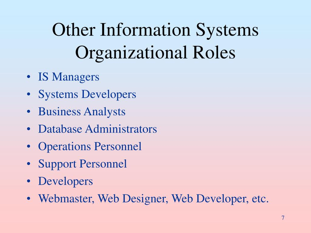 Other Information Systems Organizational Roles