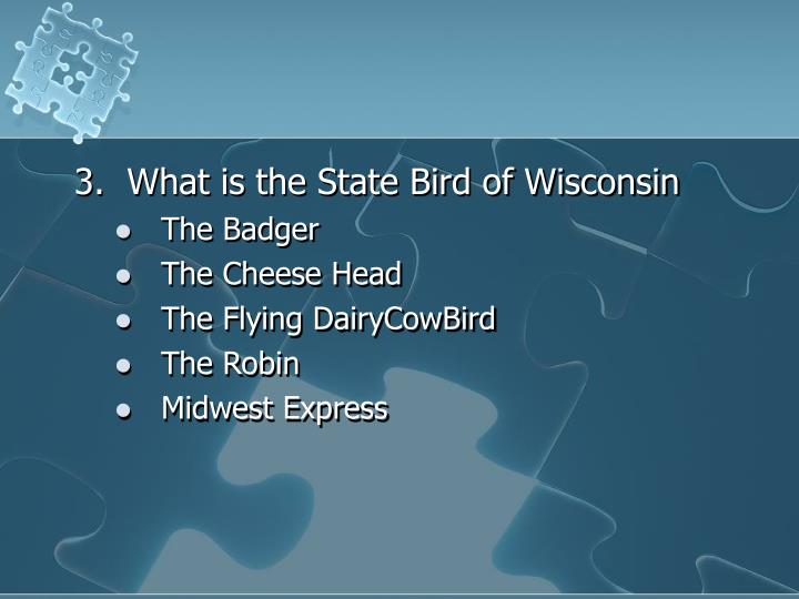 3.  What is the State Bird of Wisconsin