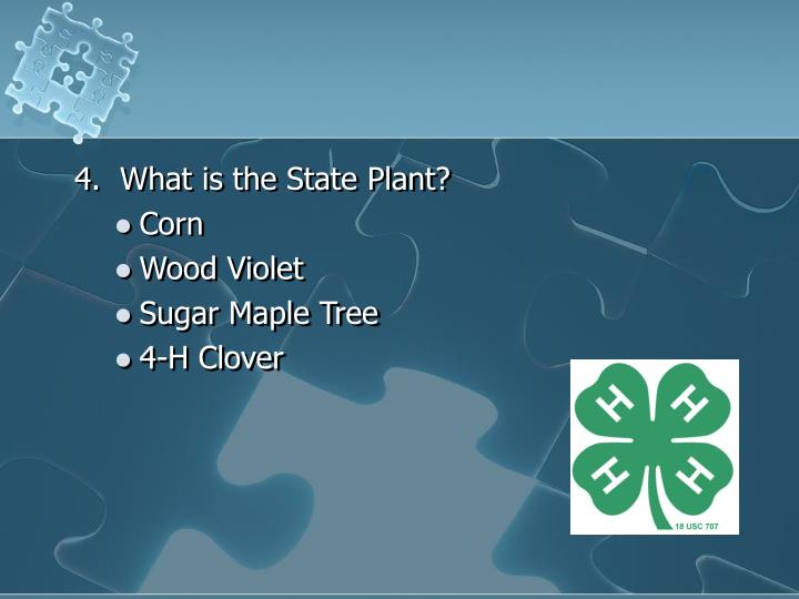 4.  What is the State Plant?