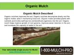 organic mulch