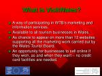 what is visitwales