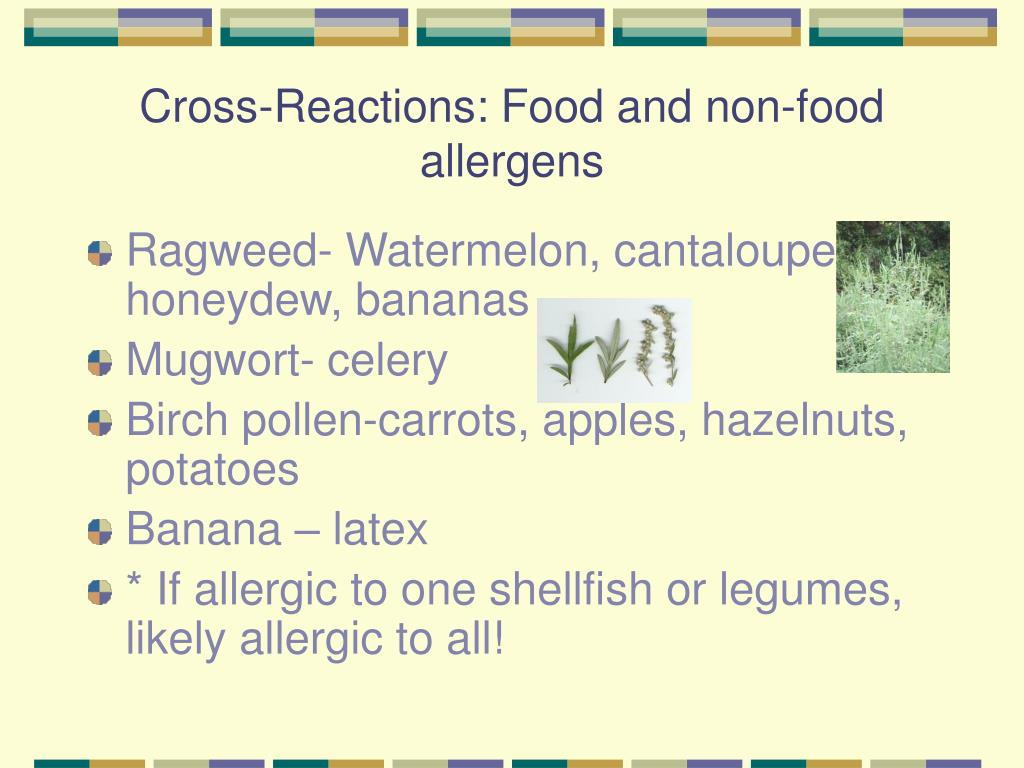 Cross-Reactions: Food and non-food allergens
