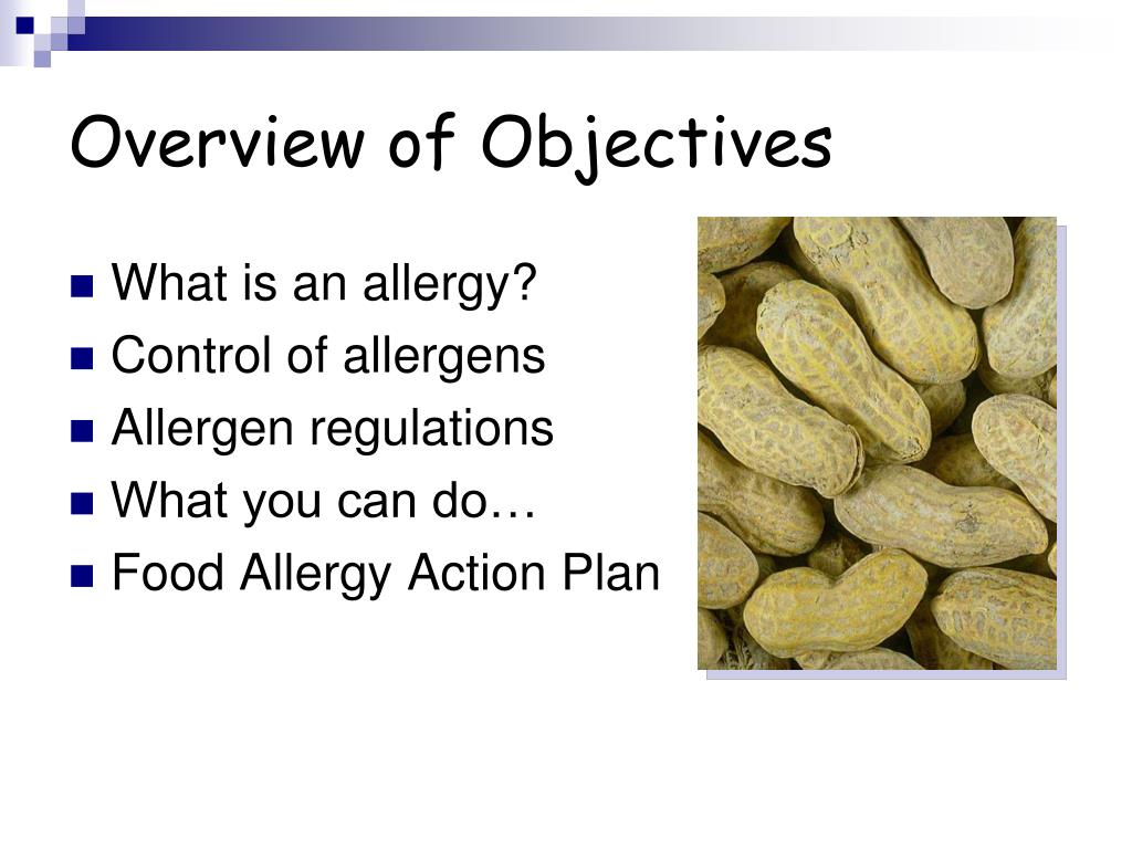 Overview of Objectives