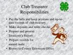 club treasurer responsibilities