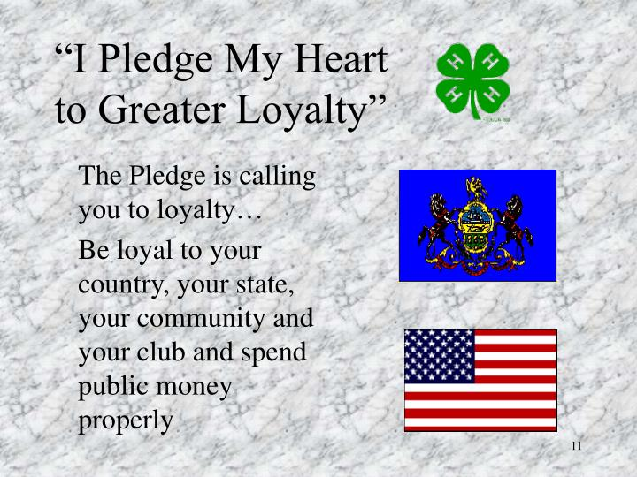 The Pledge is calling you to loyalty…