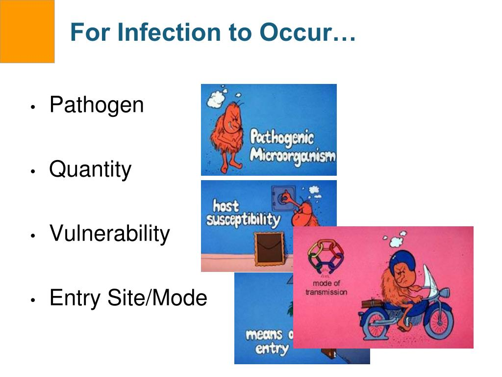 For Infection to Occur…