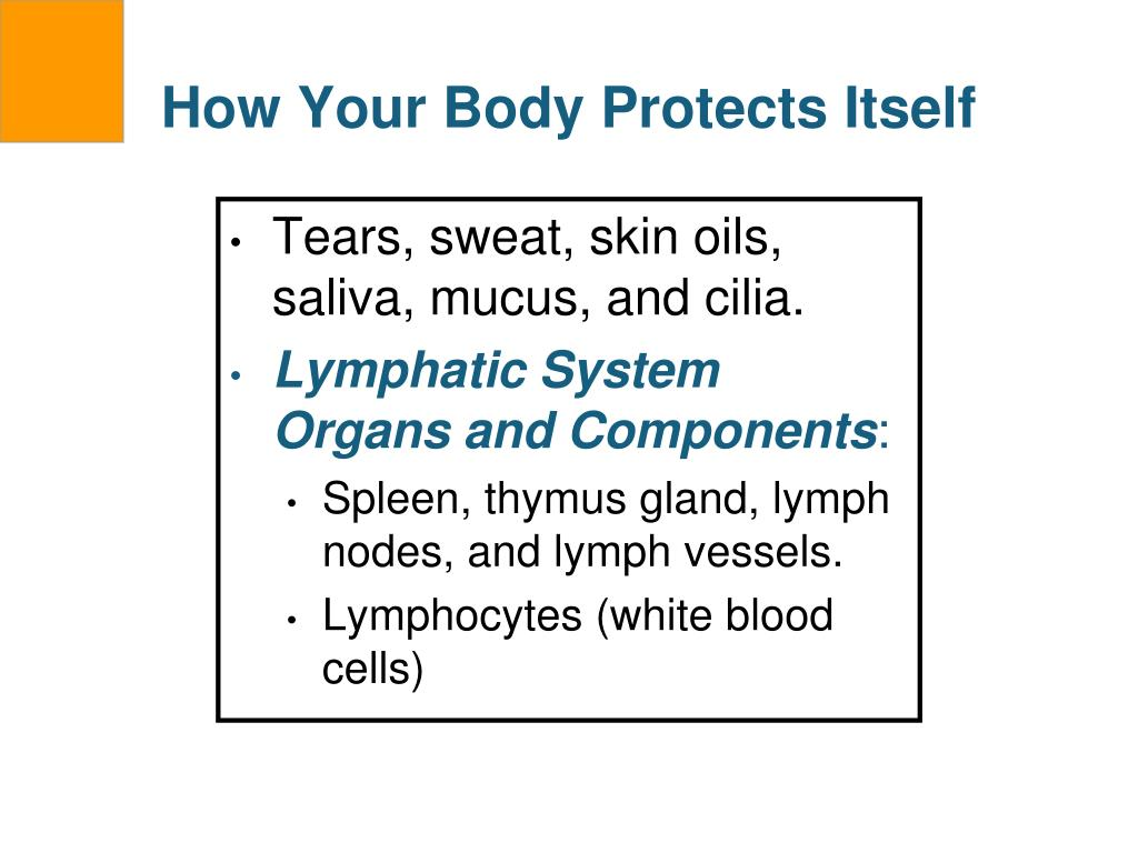 How Your Body Protects Itself