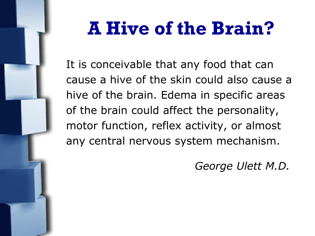 A Hive of the Brain?