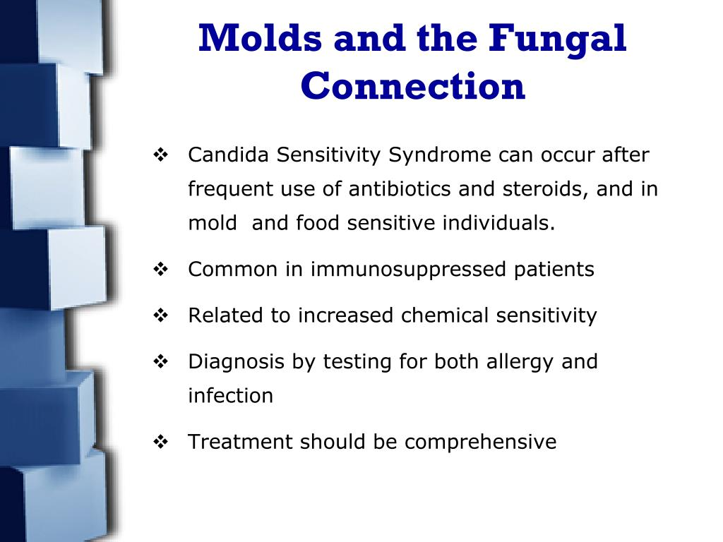 Molds and the Fungal Connection