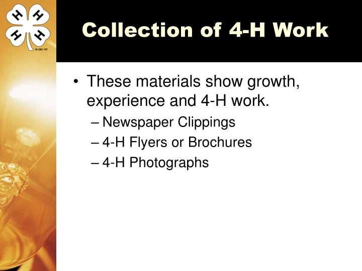 Collection of 4-H Work