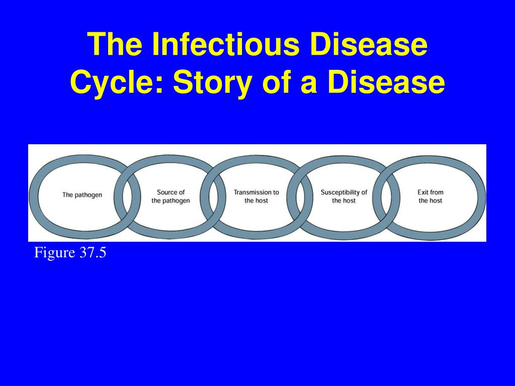 The Infectious Disease Cycle: Story of a Disease